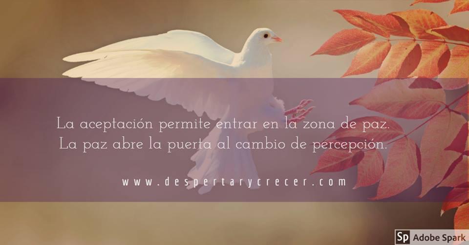 paz amor aceptación de lo que es