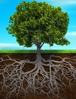 árbol genealógico ancestros emociones